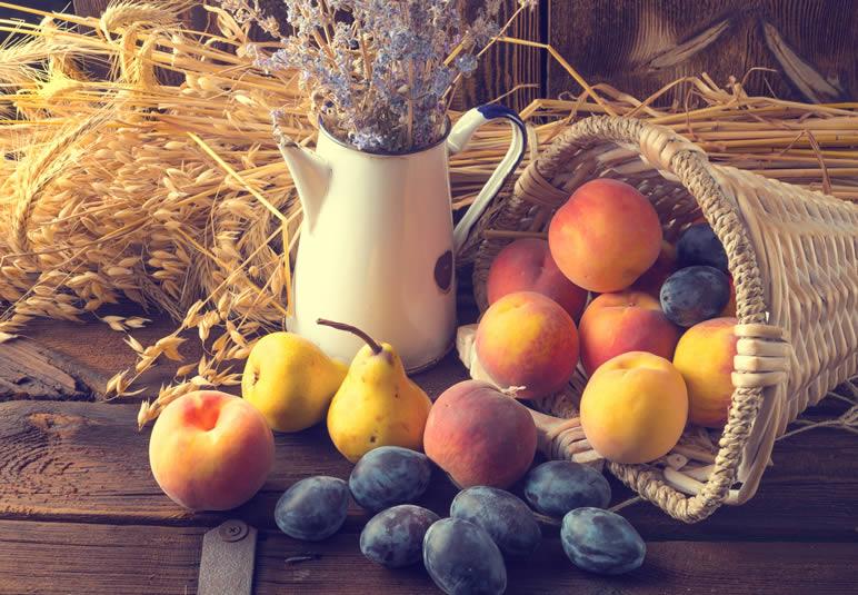 Za Obiteljska poljoprivredna gospodarstva